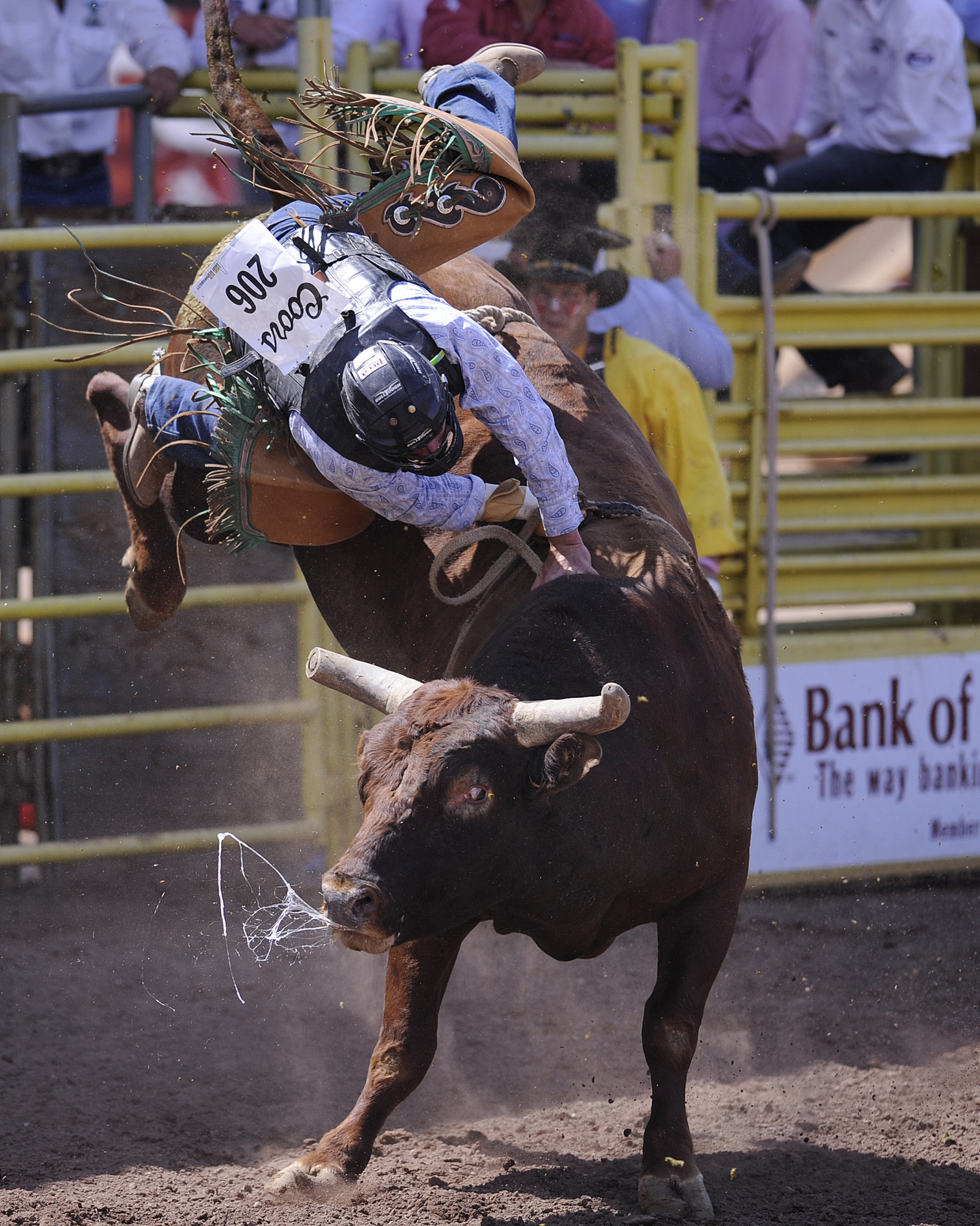 Colorado Springs things to do Pikes peak or bust Rodeo